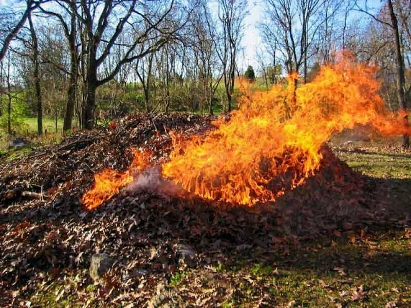 30 минут уборки сжигает:
